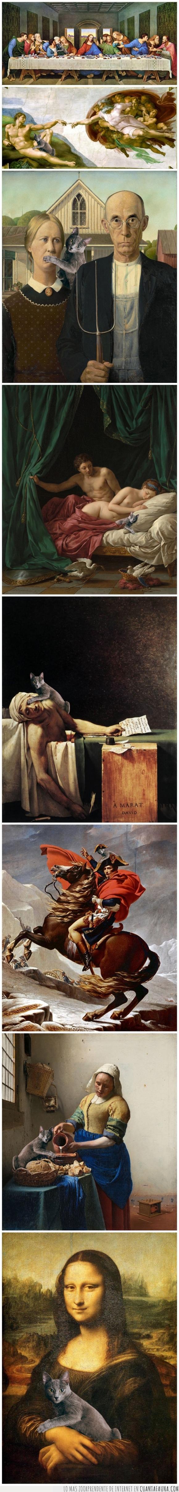 arte,chop,cuadro,gato,montaje,photoshop