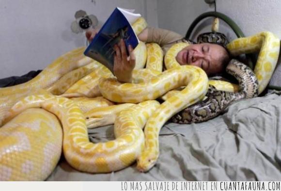 asiatico,mantas,paco,señor,serpientes,tapar