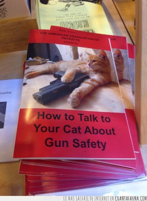 armas,Estados Unidos,gato,hablar,pamfleto,pistola,seguridad
