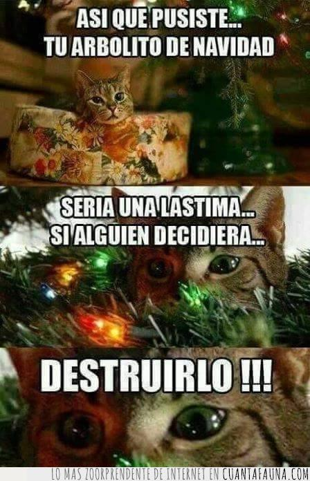 arbol,arbolito,destruir,gato,malo,navidad