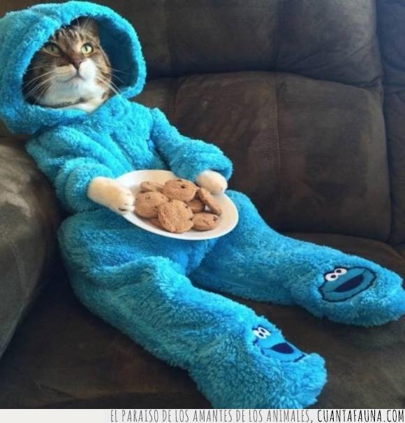 casa,cookie monster,elmo,familia,gato,madre,navidades,pijama galletas