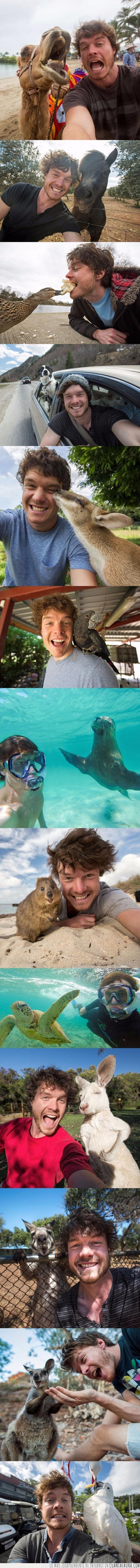 Allan Dixon,animal,canguro,loro,quokka,selfie,zoo