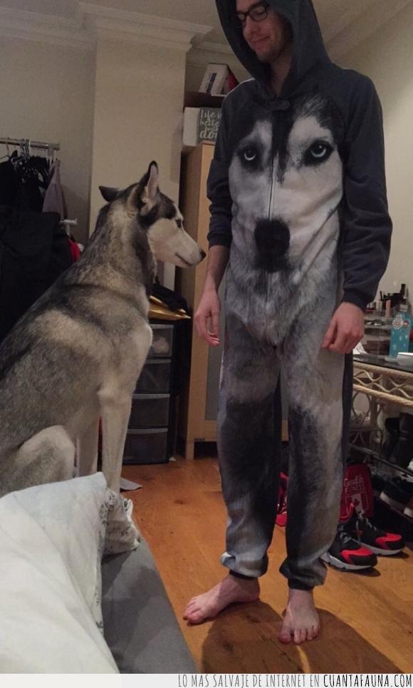 amo,dueño,humano,husky,onesie,perro,pijama