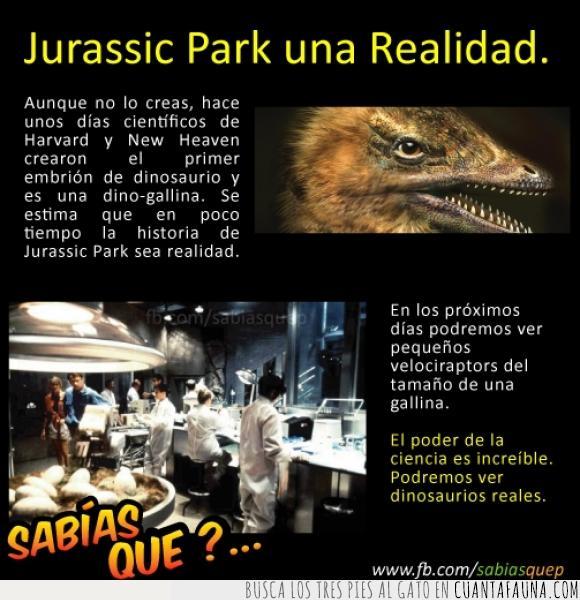 ave,dinosaurio,gallina,Jurassic Park,Jurassic World,pelicula,velociraptor