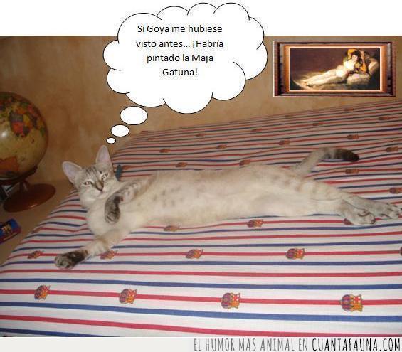 barça,cuadro,gata,Goya,maja desnuda,maja gatuna