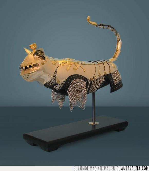 armadura,gato,medieval