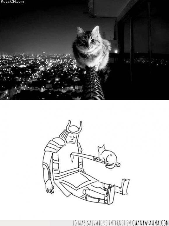 dibujo,felino,gato,humor,indiferencia,katana,mascotas,matar,samurai