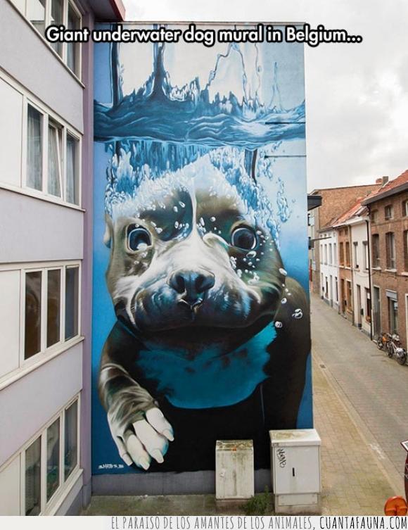 arte,Bélgica,Bruselas,hiperrealista,mural,perro,urbana