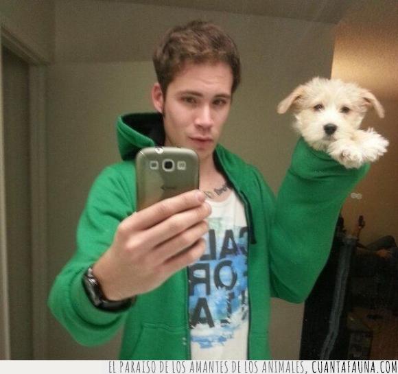 cachorro,chaqueta,chico,garfio,manga,perro,pirata,selfie,sudadera