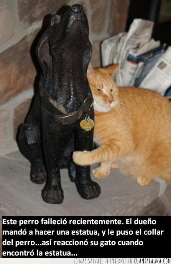 amigos,collar,estatua,gato,genial,lindo,mejores amigos,muerte,perro