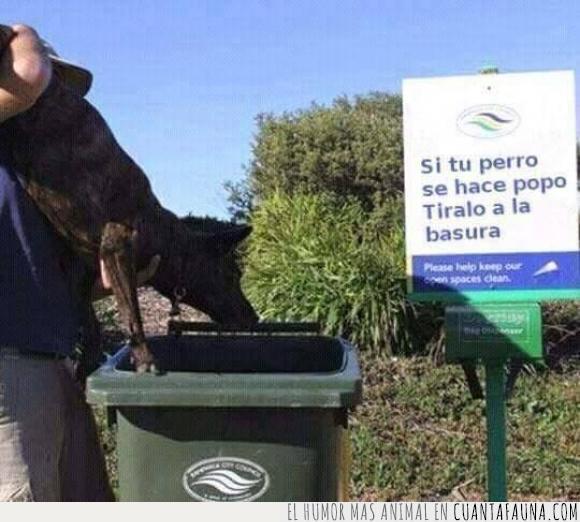 acción lógica,basura,cartel,mala redacción,Perro,popo