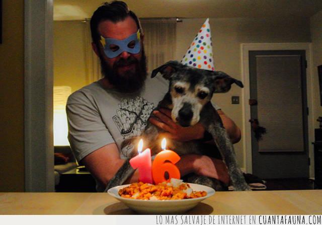 amigo,años,celebración,compañero,cumpleaños,edad,soplar,velas,viejo