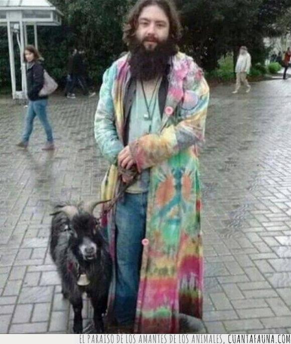 afición,cabra,colgado,droga,hippie,lsd,perro