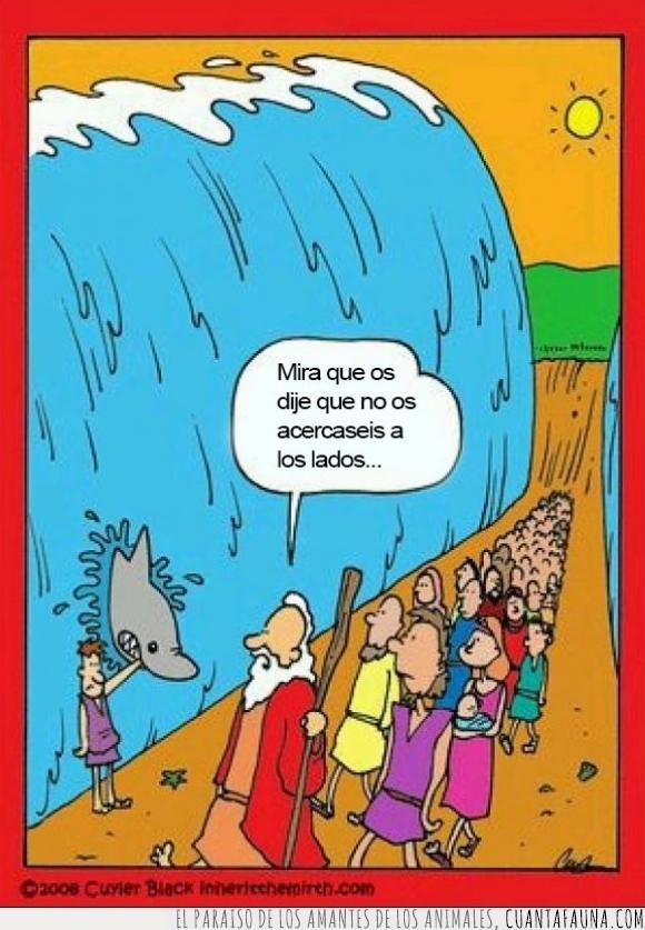 abrir,aguas,biblia,lados,mar,mar rojo,Moisés,morder,tiburón