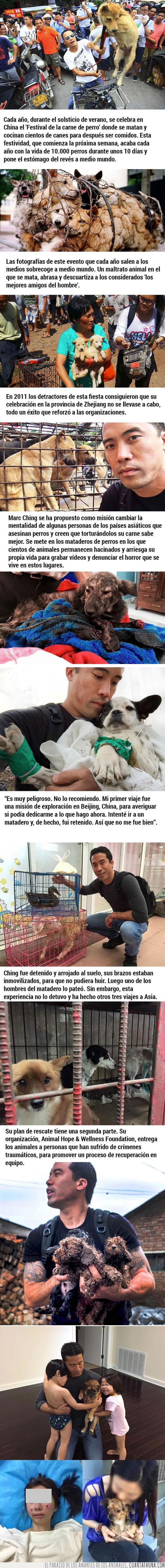 china,festival,marc ching,perros,salvador