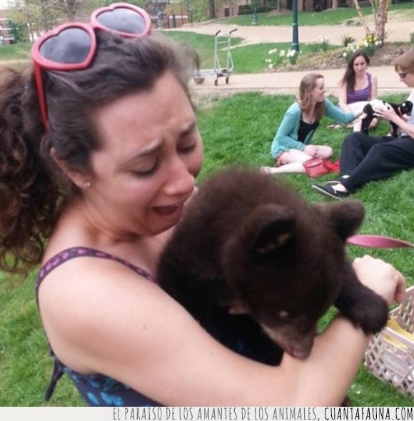 morder,osezno,oso