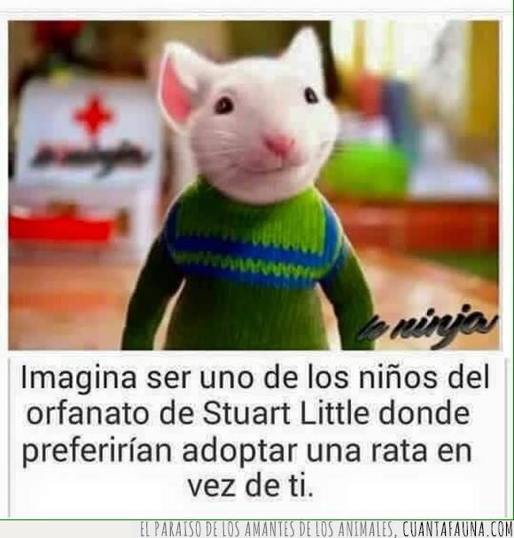 adoptar,niños,orfanato,película,ratón,Stuart Little