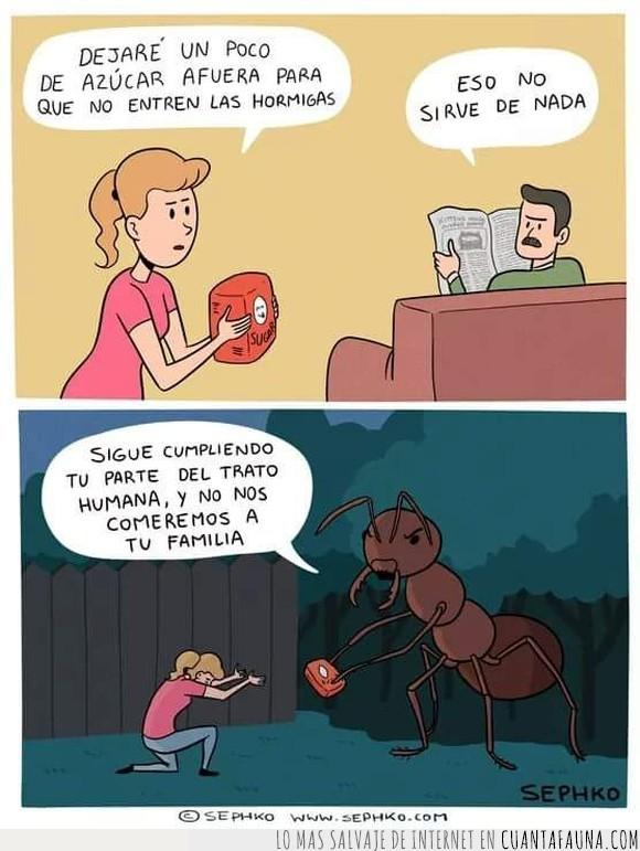 caricatura,cómic,dibujos,hormigas,humor