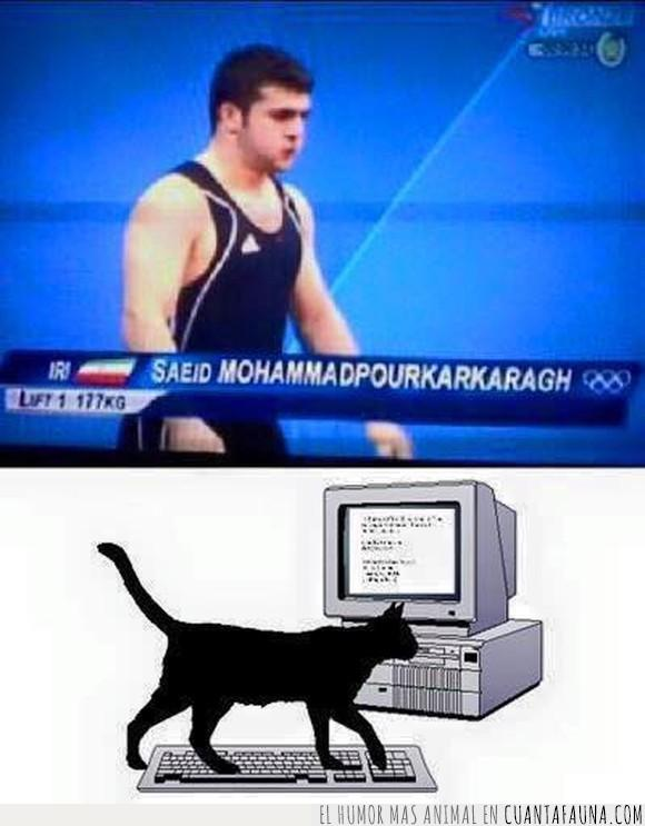 apellido,gato,iran,medallista,nombre,olimpico