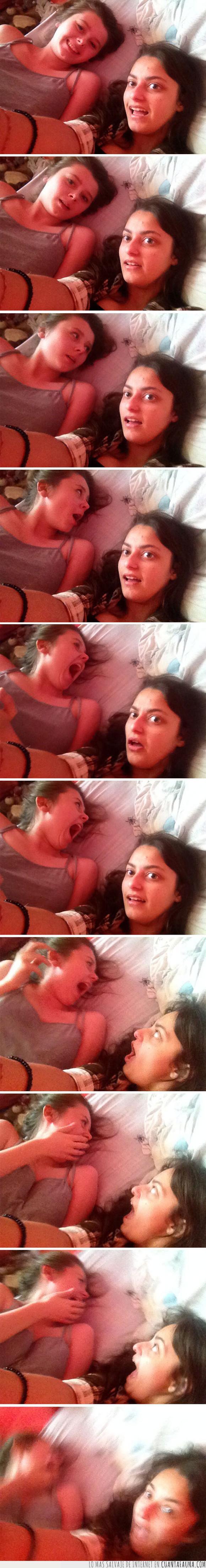 araña,chicas,foto,gritar