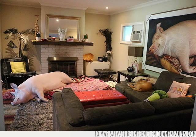 arte,cerdo,consentido,cuadro,vida