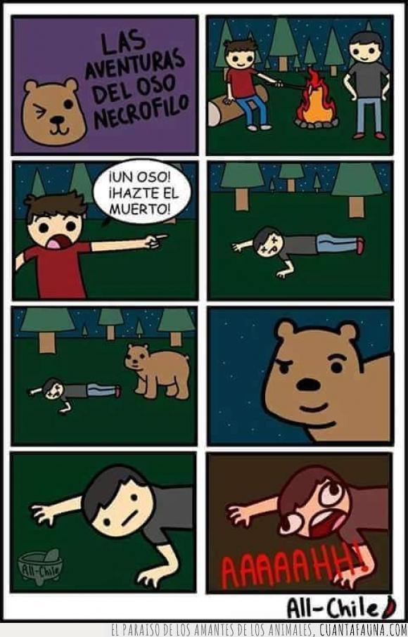 necrófilo,oso,Winnie pooh