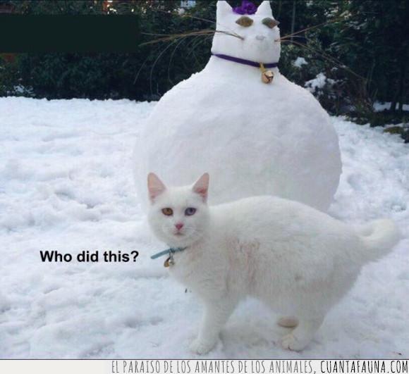 gato,muñeco de nieve,nieve