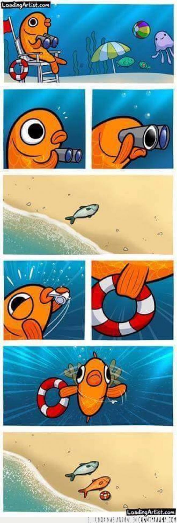 ahogado,mar,Pez,playa,salvavidas,Verano