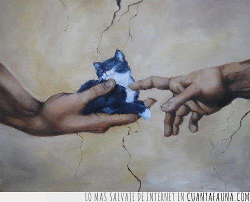 arte,dedo,dios,gatito,gato,hombre,humano,la creación de adán,obra