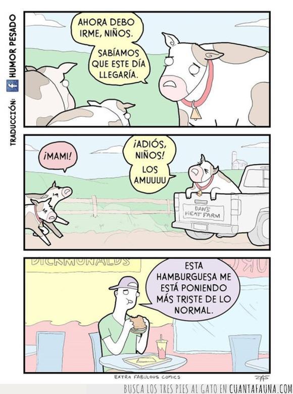 dolor,hamburguesa,vaca