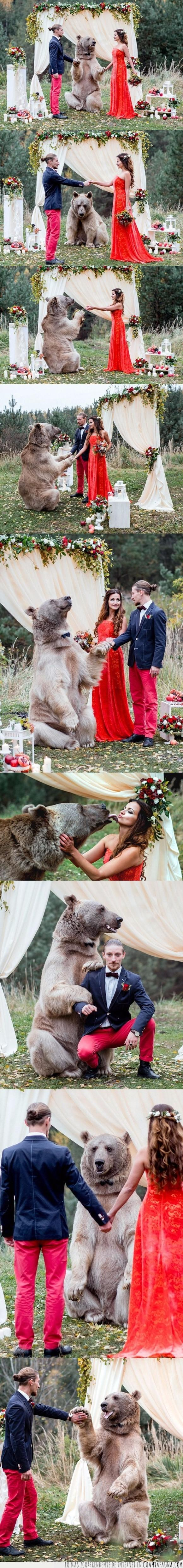 boda,oso,rusos,wtf