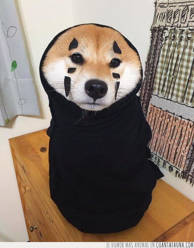 chihiro,dibujos,disfraz,interpretación,japonés,película,perro,personaje,shiba,sin cara