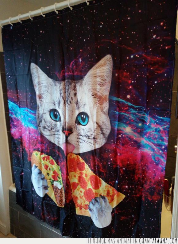 baño,cortinas,gato,pizza,tacos