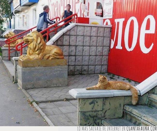 currículum,dorado,entrada,estatua,gato,león,mentir,posar,trabajo