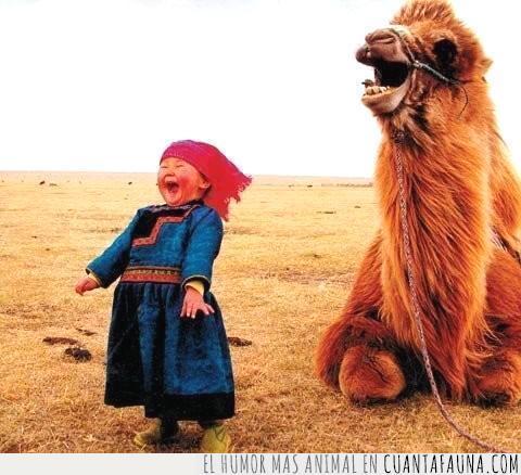 camello,feliz,juntos,mongolía,niña,sonreír