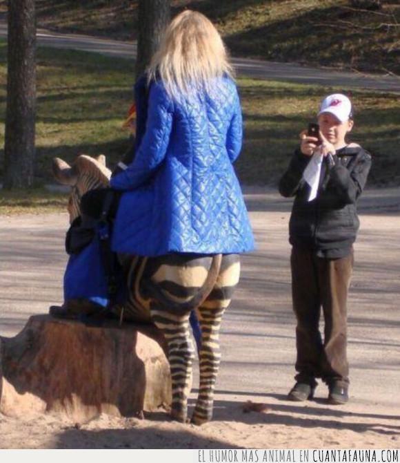 cebra,pantalones,pregunta