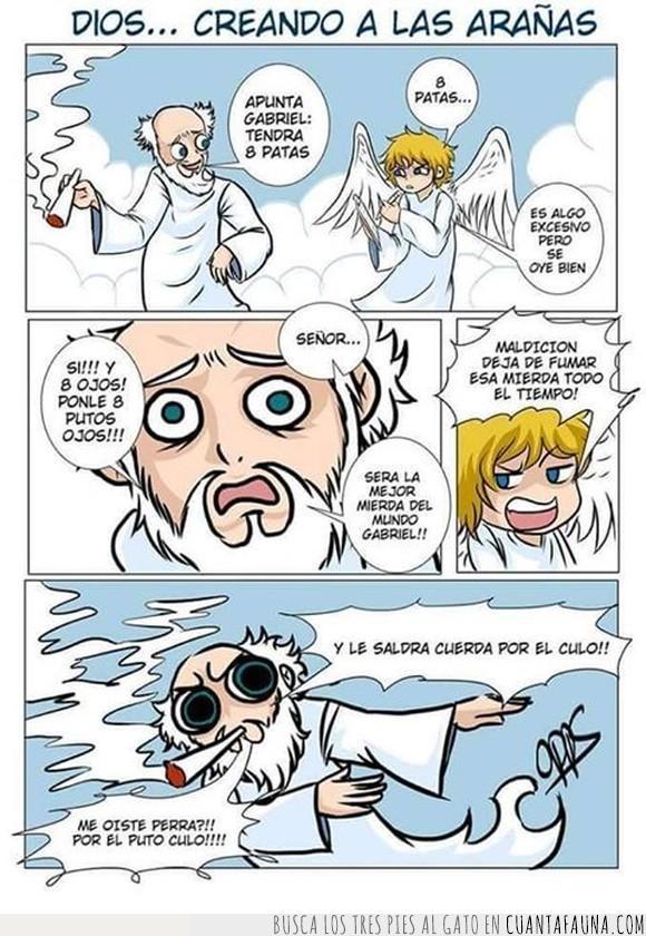 angel,arañas,dios,humor