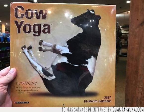 leche,libro,vaca