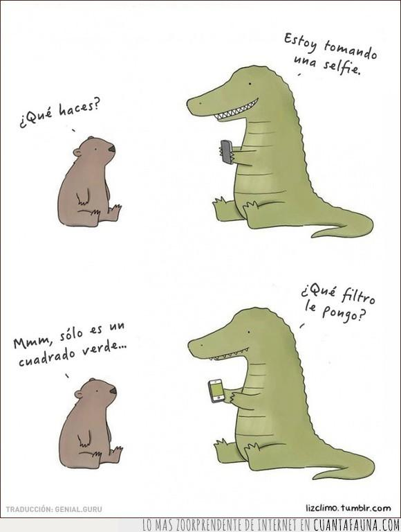 animales,Cocodrilo,reptil,selfie,T-Rex,verde