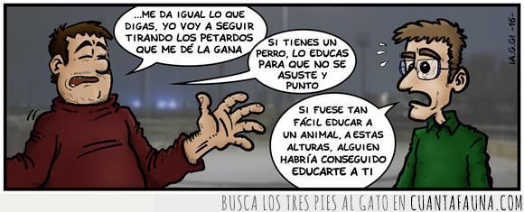 animales,perros,petardos