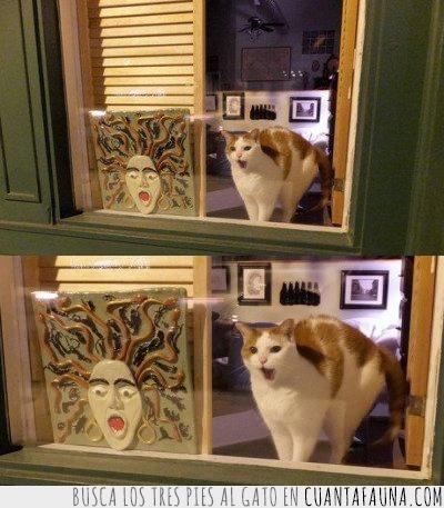arte,bostezo,cerámica,gato,imitar,ventana,vida