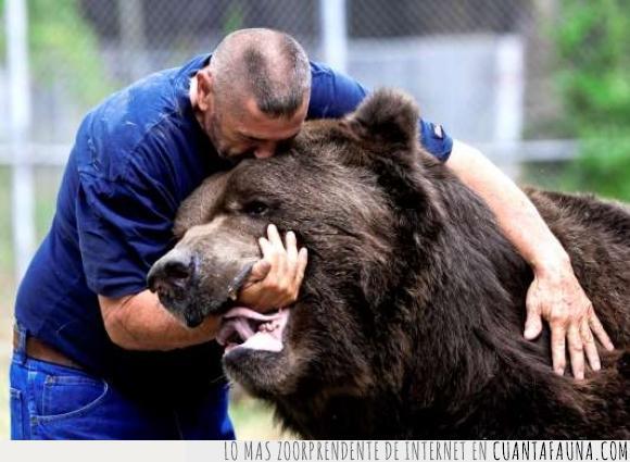 amistad,mordida,oso