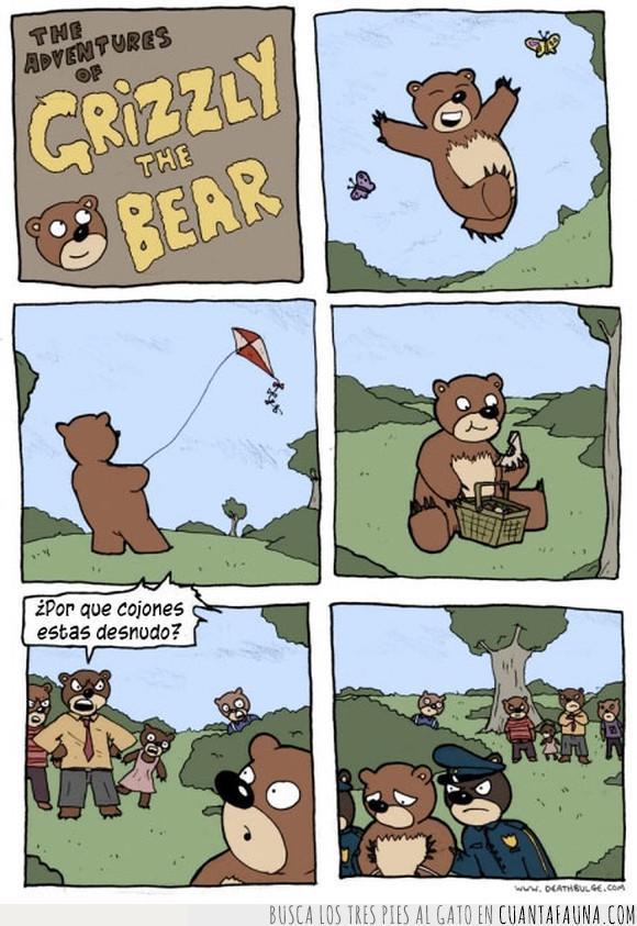 desnudo,osito,oso