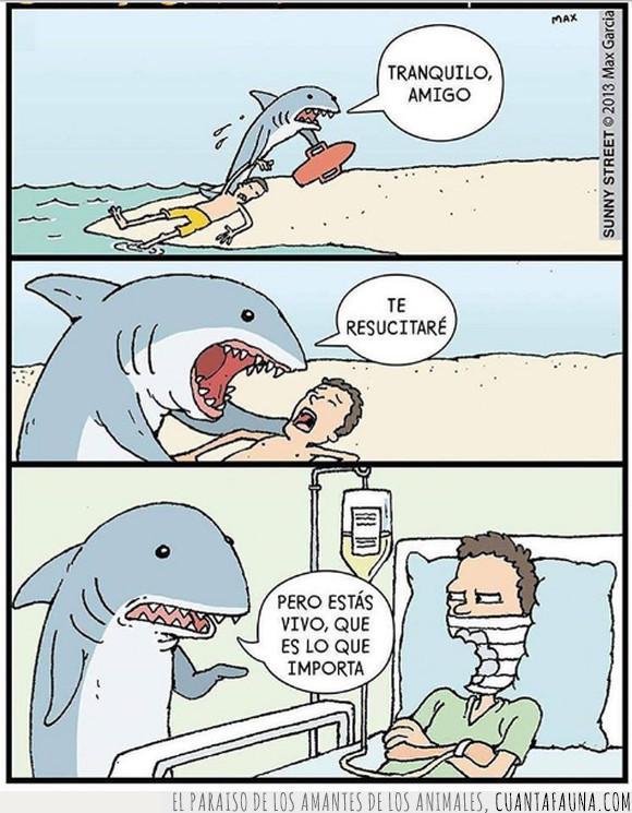 boca a boca,morder,tiburón