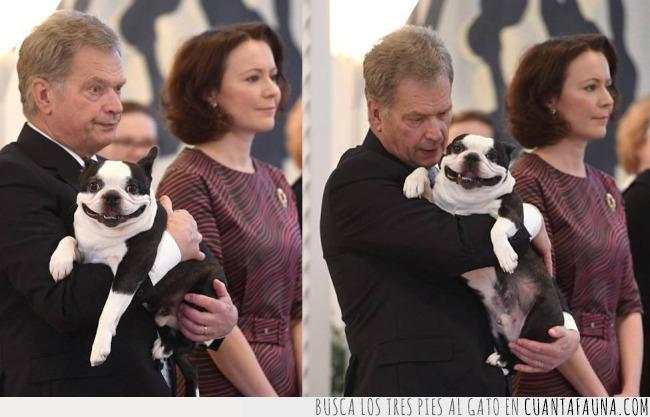 acto,blanco,brazo,finlandia,lennu,negro,perro,presidente,público,sonrisa