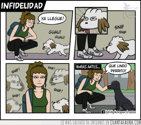 amo,infiel,mascota,oler,perro