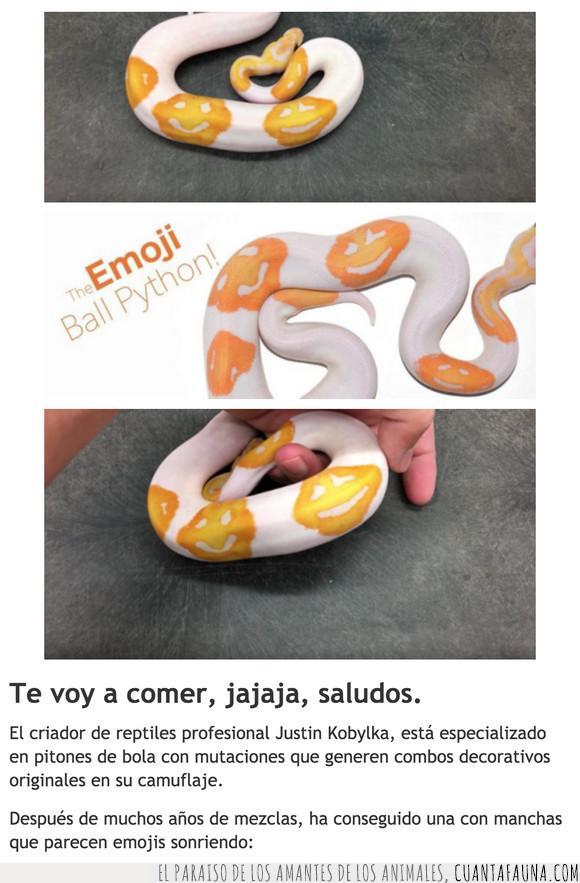 emoji,risa,serpiente,smiley
