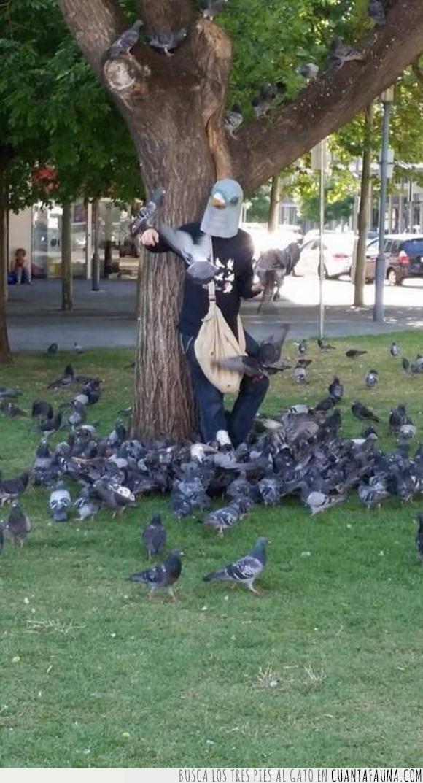 ejército,grande,palomas,palomero