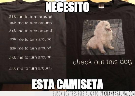 amante,animales,camiseta,foto,mensaje,necesitar,negra,negro,original,perro,querer,trapos