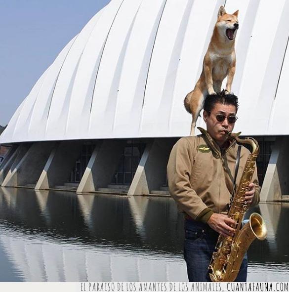 ciudad de las artes,conocer,dúo,jazz,músico,petar,shiba